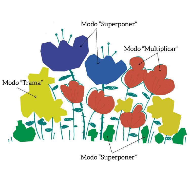 12_flores-CAPAS