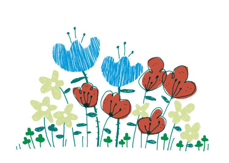 12_flores_color